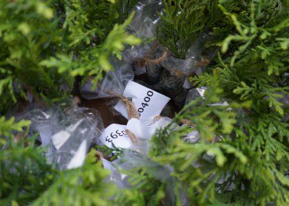 ODBF MAKES EARTH DAY DONATION TO ECOLOGY OTTAWA